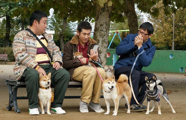 3 個中年大叔配上可愛柴犬,《柴公園》讓人噴飯又噴淚