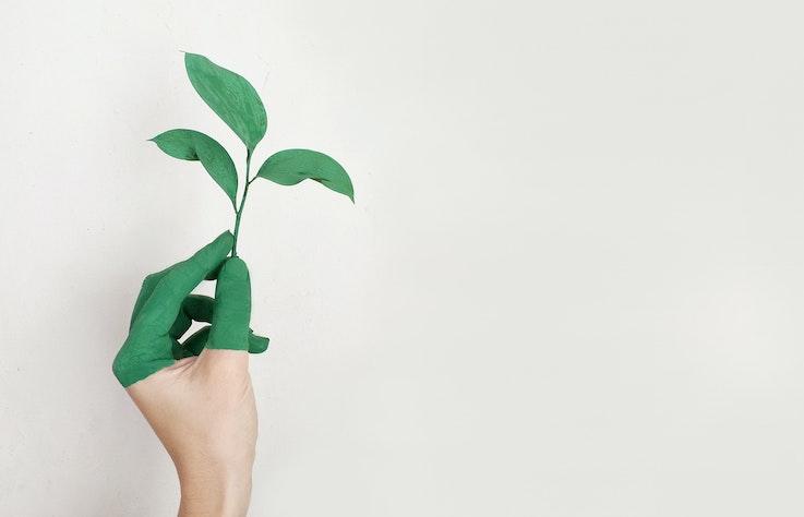 綠色地球:我們該如何面對全球的永續發展與未來?