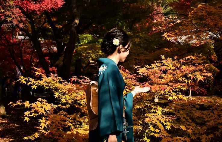 秋天除了賞楓還能幹嘛?來看看日本人秋天最愛從事的 10 個活動