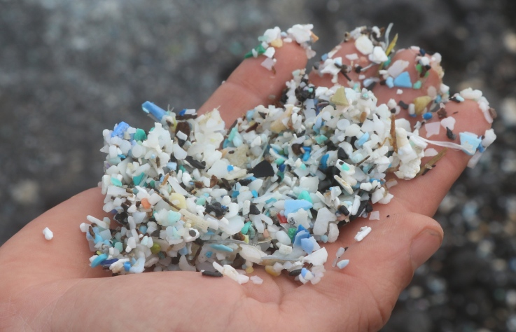 亞太社企高峰會/讓海洋塑膠微粒消失,別再讓海龜吃塑膠